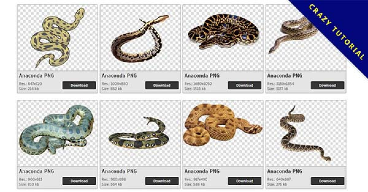15 Anaconda PNG images are free to download