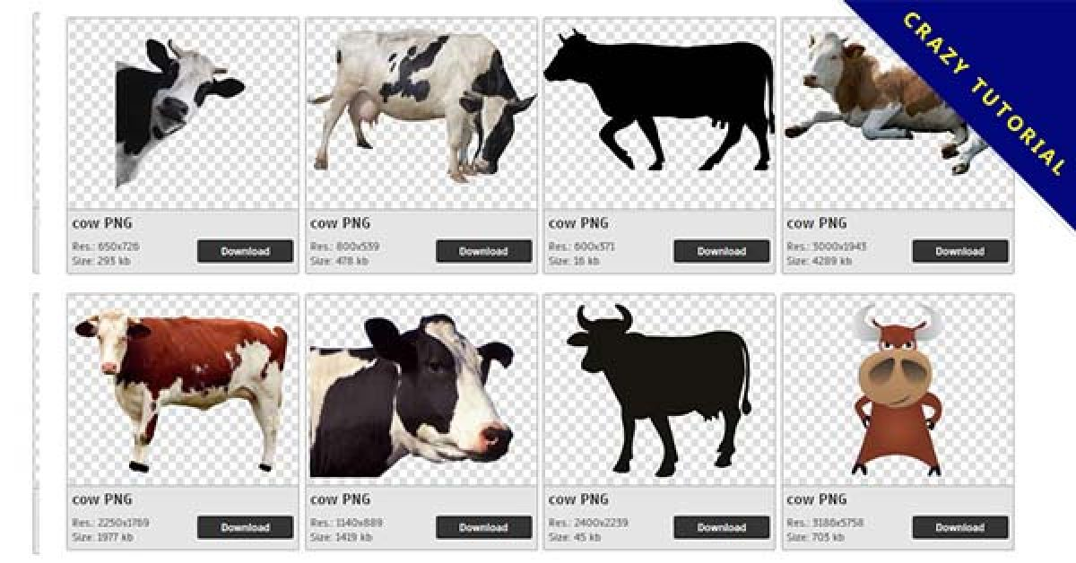 101 Cow PNG images are free to download