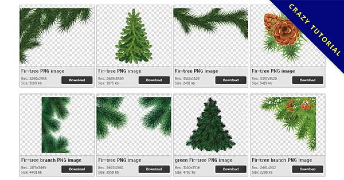 43 Fir-tree PNG images are free to download