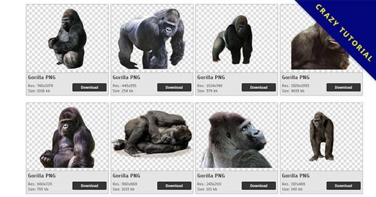 15 Gorilla PNG image collection for free download
