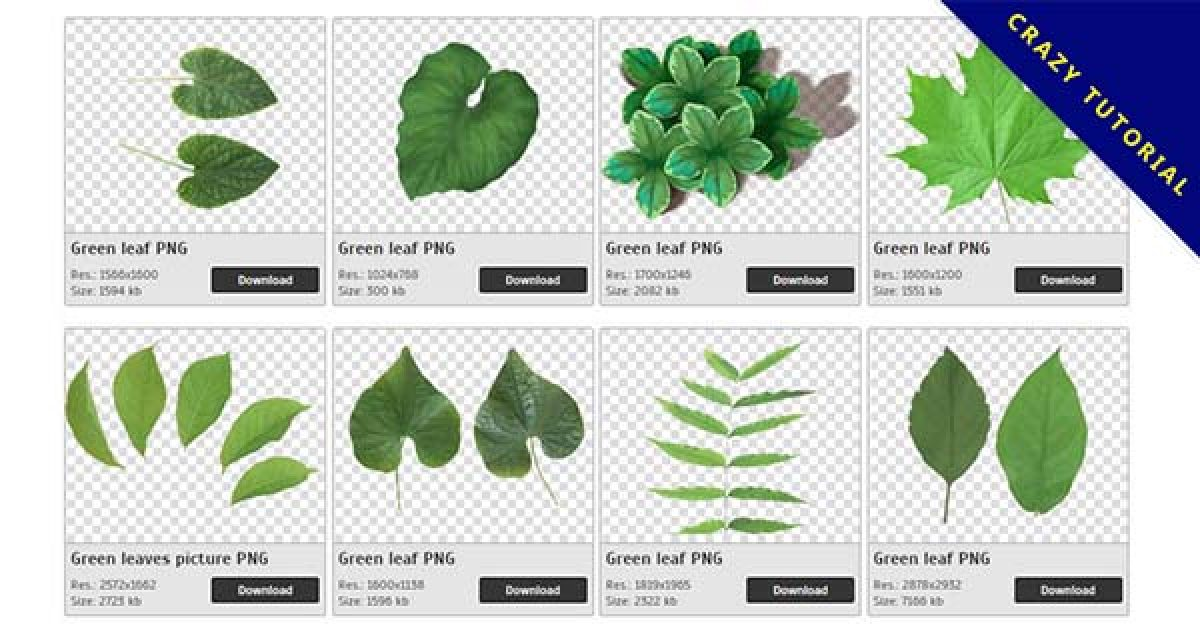 66 Greens leaves PNG images for download