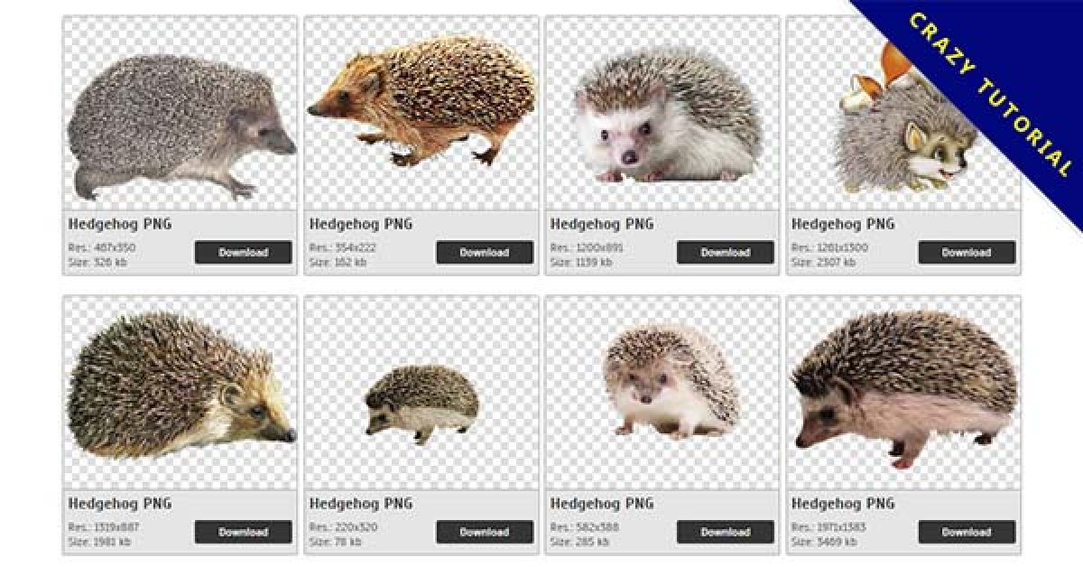20 Hedgehog PNG images are free to download