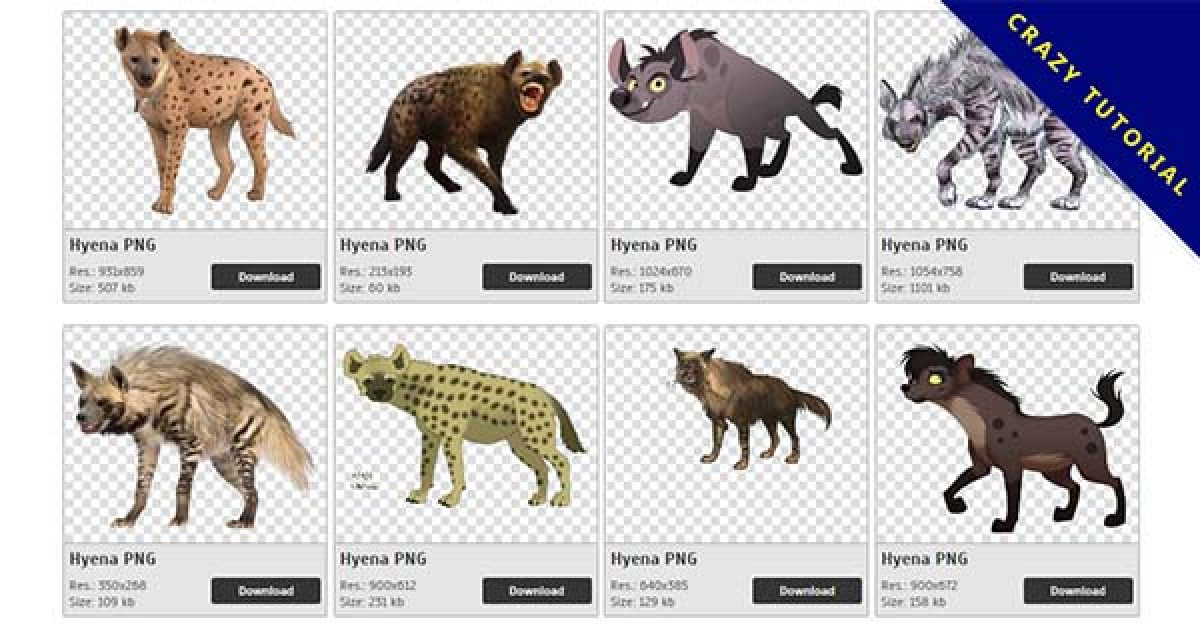 49 Hyena PNG images for free download