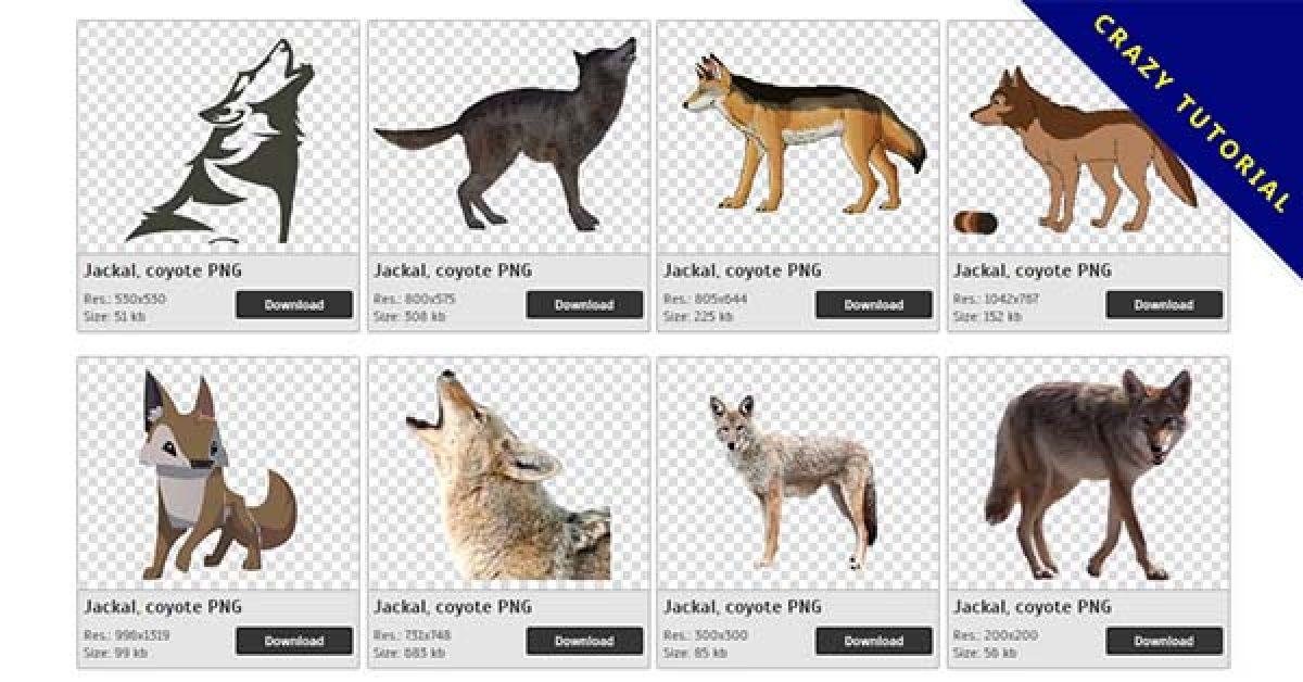 54 Jackal PNG images for free download