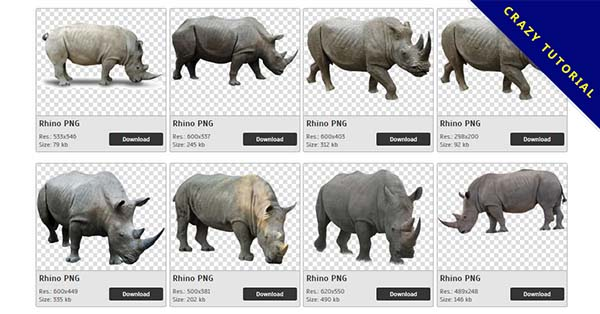 41 Rhino PNG image collections are available for free download