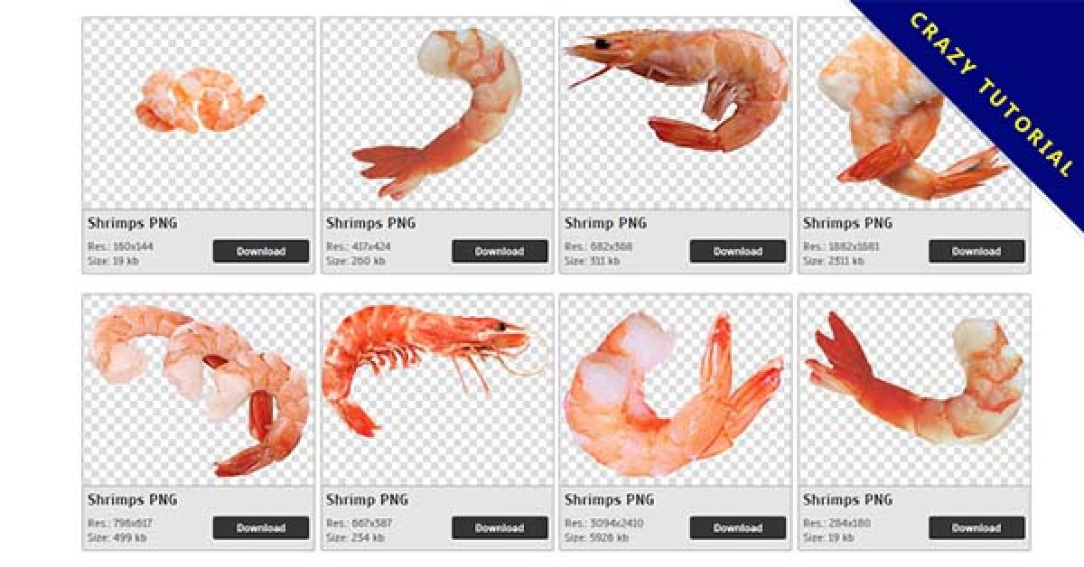 27 Shrimps PNG images are available for free download