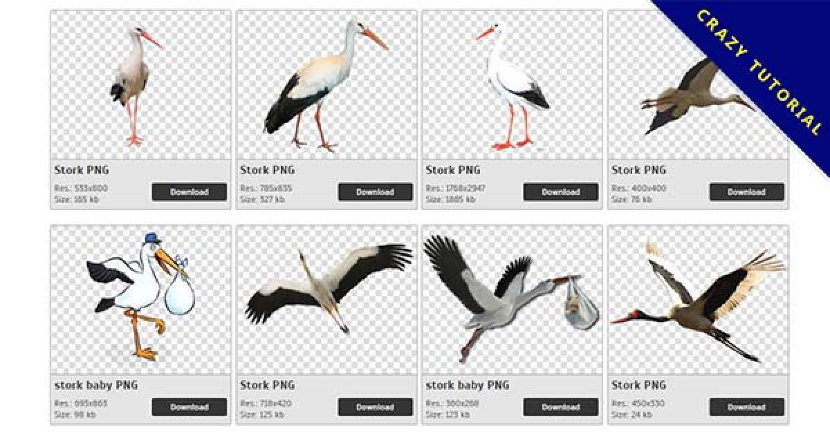 47 Stork PNG image collection free download