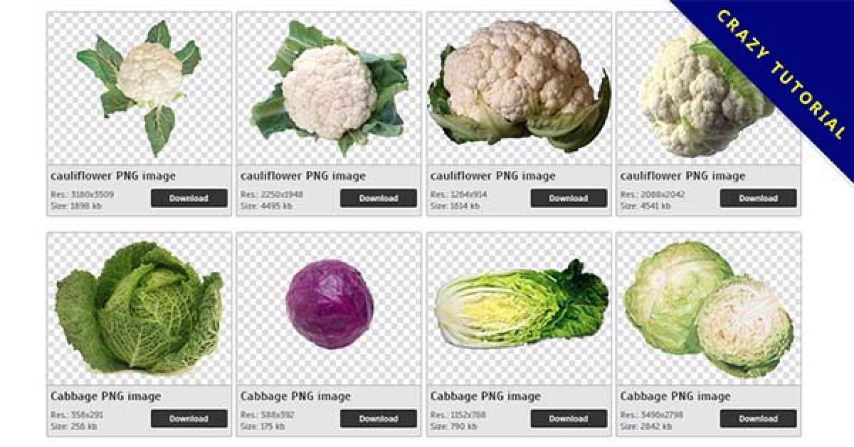 47 Cabbage PNG images for free download