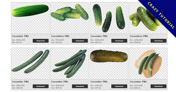 32 Cucumber PNG image free download - CrazyPNG com-Crazy Png
