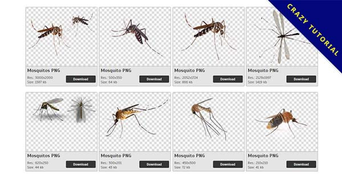 32 Mosquito PNG images are free to download
