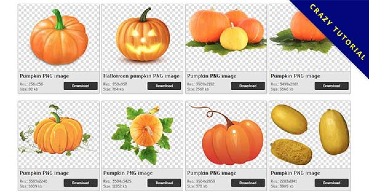 48 Pumpkin PNG images are free to download